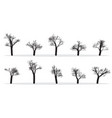 Naked trees silhouettes set hand drawn isolated