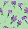 seamless pattern floral crocus vector image