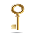 Three dimensional little golden key vector image