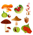 autumn nature icons of tree vector image