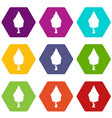 Cypress icon set color hexahedron vector image