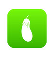 eggplant icon digital green vector image vector image