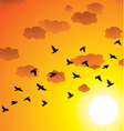 flock of flying birds vector image vector image