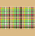 green plaid pixel texture madras color fabric vector image vector image