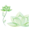 Green spa flower vector image vector image