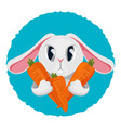 long haired rabbit holding carrot in two paws vector image vector image