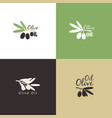 olive branches logo icons set vector image