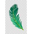 palm tree leaf vector image