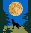 wolf at night vector image vector image