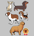 dogs collection part 2 vector image