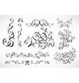 calligraphic design elements smooth floral lines vector image