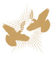 dove peace silhouette vector image vector image