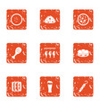dried food icons set grunge style vector image vector image