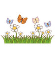 isolated picture many butterflies in garden vector image vector image