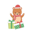 cute bear with gift boxes merry christmas vector image