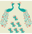 Decorative beautiful abstract peacock luxury vector image vector image