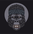 gorilla head bandana vector image vector image