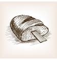 Rasp in bread hand drawn sketch style vector image vector image