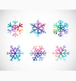 snowflakes colorful vector image