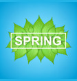 spring letter with realistic green leaves vector image