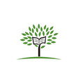 book of tree vector image