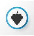 bunch icon symbol premium quality isolated grapes vector image