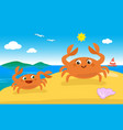 cute crab family on the beach vector image vector image