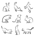 Dog cat rabbit animal drawin vector image