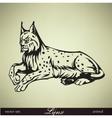 lying lynx vector image vector image