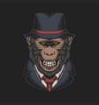 mafia monkey vector image