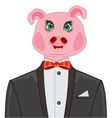 Pig in suit vector image vector image