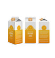 realistic orange juice box in different vector image vector image