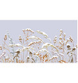 seamless border with meadow plants under snow vector image vector image