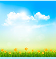 spring nature background with a green grass vector image vector image