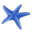 starfish in blue color vector image