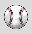 baseball ball isolated on grey background vector image