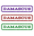 damascus watermark stamp vector image vector image