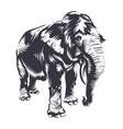 elephant art vector image