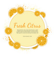 orange fruit label citrus banners vector image