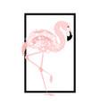 pink flamingo card vector image vector image