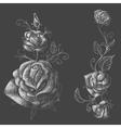 Roses design elements black background vector image vector image