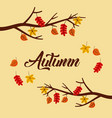 autumn tree branch leaves poster foliage with text vector image
