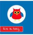 Baby shower card with red owl Its a boy vector image