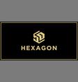 dd hexagon logo vector image vector image