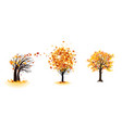 fall trees set vector image