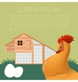 Henhouse banner with rooster vector image vector image