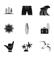 Surfing icons set simple style vector image vector image