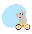 cute little hippo character riding bicycle vector image vector image
