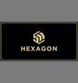 dk hexagon logo vector image