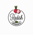 radish slice logo round linear logo radish vector image vector image